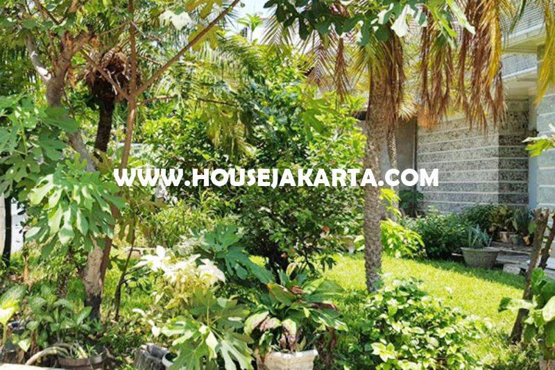 HS1031 Rumah Jalan Garut Menteng Dijual Murah Tanah Kotak Golongan C