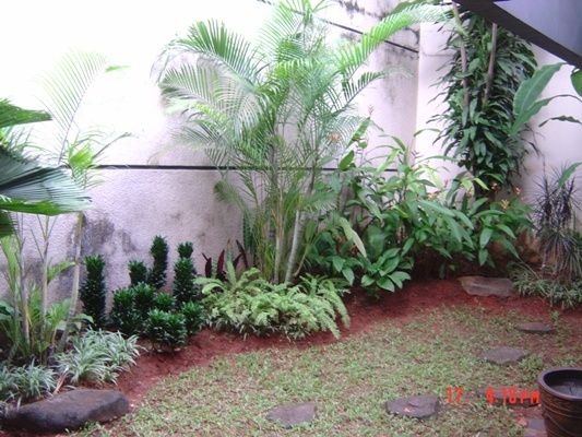 HR132 Nice house for rent at Kebayoran Baru