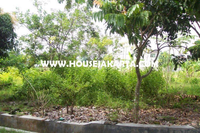 LS1346 Tanah Jalan BDN Cilandak Cipete luas 1.005m Dijual Murah harga 20 juta/m Bisa dibangun 3 kavling