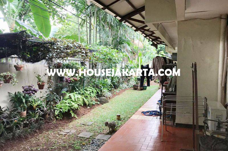 HS1460 Rumah Jalan Indramayu Menteng Dijual Tanah Persegi daerah Elite jarang ada