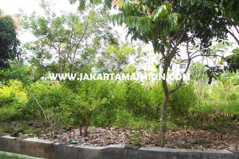 LS1345 Tanah Jalan BDN Cilandak Cipete luas 1.005m Dijual Murah harga 20 juta/m Bisa dibangun 3 kavling
