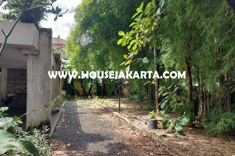 HS1461 Rumah Tua Hitung Tanah Jalan Madiun Menteng Bentuk Persegi Dijual 60juta/m Murah
